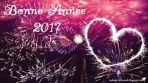 2017-bonne-annee-1